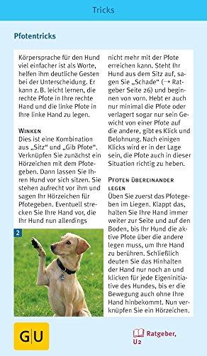 Hunde-Clicker-Box: Plus Clicker für sofortigen Spielspaß (GU Tier-Box) - 7