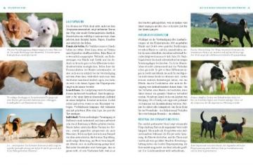 Hunde. Das grosse Praxishandbuch - 6