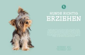 Hunde. Das grosse Praxishandbuch - 9