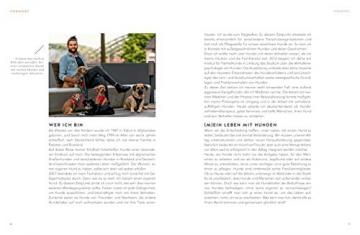 Sei höflich zu deinem Hund!: Kommunikation auf Augenhöhe (GU Tier Spezial) - 3