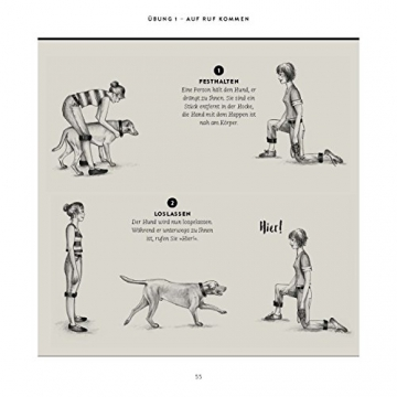 So einfach geht Hundeerziehung: Von der Bestseller-Autorin – Auf einen Blick: Illustrationen zeigen Schritt für Schritt, was wirklich wichtig ist (GU Tier Spezial) - 14