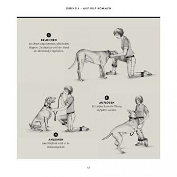 So einfach geht Hundeerziehung: Von der Bestseller-Autorin – Auf einen Blick: Illustrationen zeigen Schritt für Schritt, was wirklich wichtig ist (GU Tier Spezial) - 15