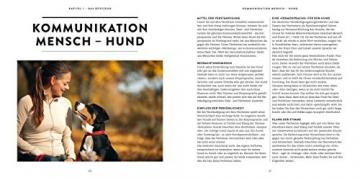 So einfach geht Hundeerziehung: Von der Bestseller-Autorin – Auf einen Blick: Illustrationen zeigen Schritt für Schritt, was wirklich wichtig ist (GU Tier Spezial) - 5