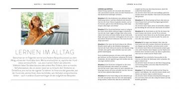 So einfach geht Hundeerziehung: Von der Bestseller-Autorin – Auf einen Blick: Illustrationen zeigen Schritt für Schritt, was wirklich wichtig ist (GU Tier Spezial) - 6
