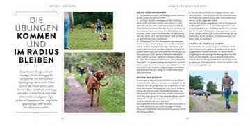 So einfach geht Hundeerziehung: Von der Bestseller-Autorin – Auf einen Blick: Illustrationen zeigen Schritt für Schritt, was wirklich wichtig ist (GU Tier Spezial) - 10